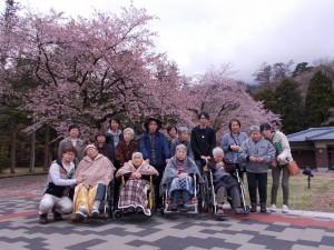 花見合同「見事な桜です」