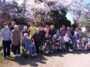 合同お花見ツアー「桜の名所を巡りました」