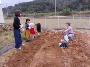 収穫祭「今年もたくさんさつま芋が取れました」