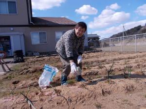 GH作業「肥料巻けば畑も喜ぶよ」