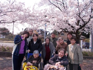 GH花見「見事な桜にうっとりです」